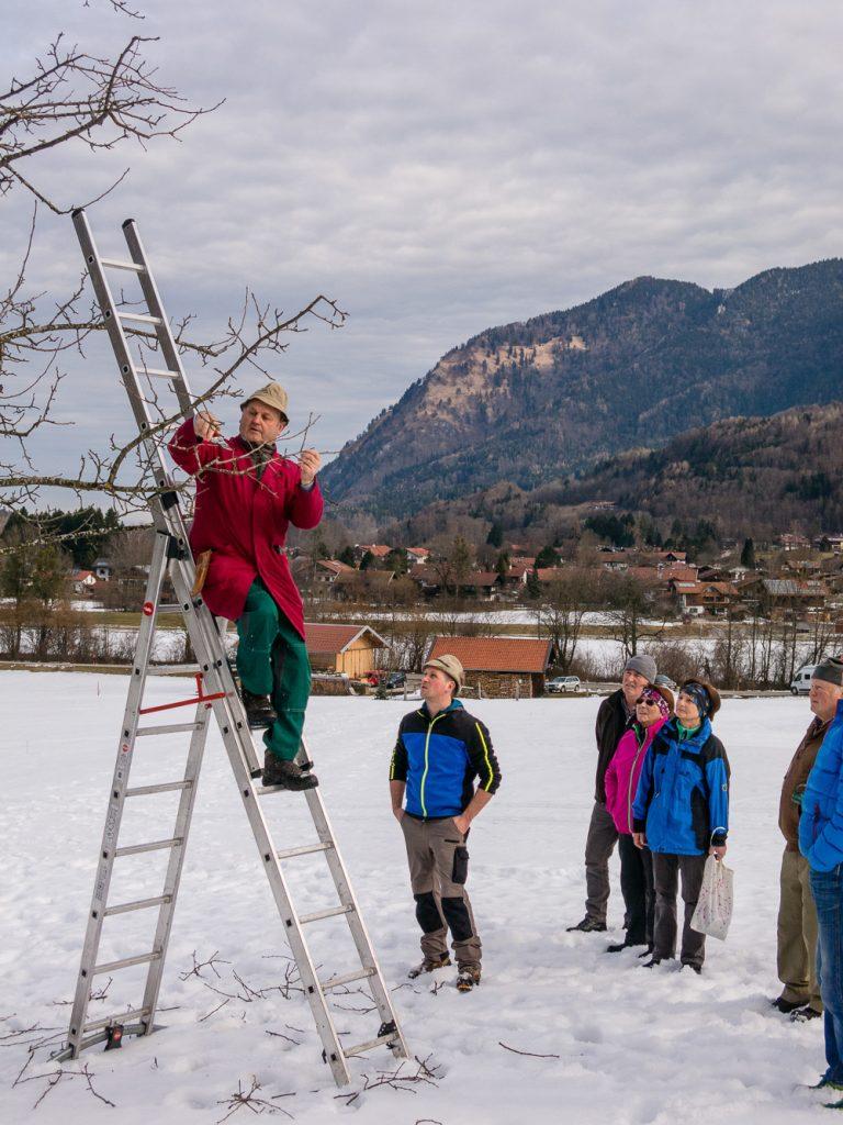 Obstbaumschnittkurs des Gartenbauvereins Unterwössen mit Peter Weißenbacher